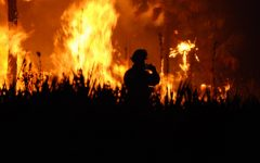 The Dangers and Benefits of the Wildfires